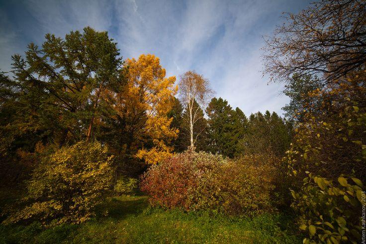Прощальные аккорды осени - Красивые осенние фотографии