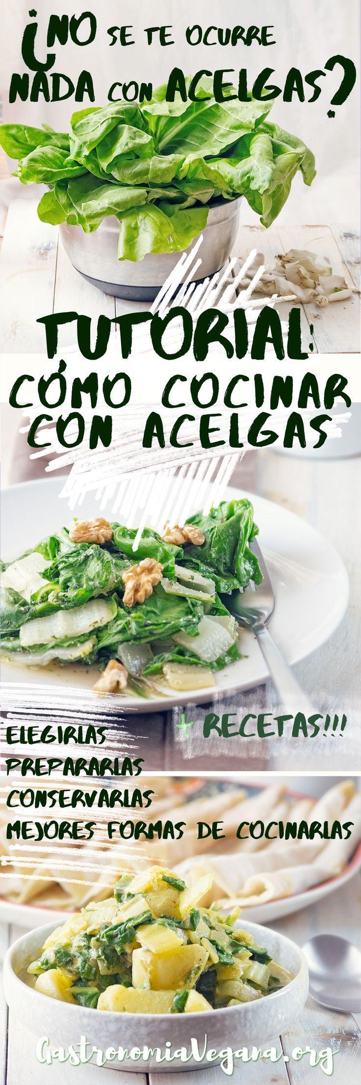 Tutorial: cómo cocinar con acelgas - elegir, almacenar, preparar y recetas de ejemplo #vegan   https://lomejordelaweb.es/