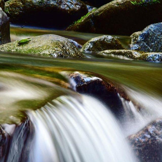 【osa.yuya】さんのInstagramをピンしています。 《いつの日かの道志川 * #nikon#camera#d3300#photo#river#nature#slowshutter#instagood#instalike#instagram#ig_japan#follow#hobby#love#キャンプ#初心者#キャンパーへの道#アウトドア#写真#カメラ#テント#川#道志#スローシャッター#自然#森#緑》