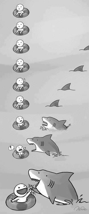 Clasico Vas a la playa y un tiburon te saluda. Jajajaja