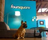 Офис Foursquare в Сохо в Нью Йорке! Над ее оформлением работала студия Designer Fluff, сумевшая выразить легкость, беззаботность и веселье в интерьере главного офиса социальной сети. www.i-lift.tv http://i-lift.tv/ru/news/#ofis-foursquare-v-soho-v-n-yujorke