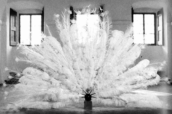 Rebecca Horn | Mechanical Peacock Fan, 1978-80 [macchina per il film 'La Ferdinanda' (1981)]