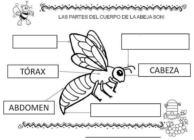 abejas para primaria - Buscar con Google