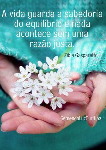 Zibia Gasparetto                                                                                                                                                                                 Mais