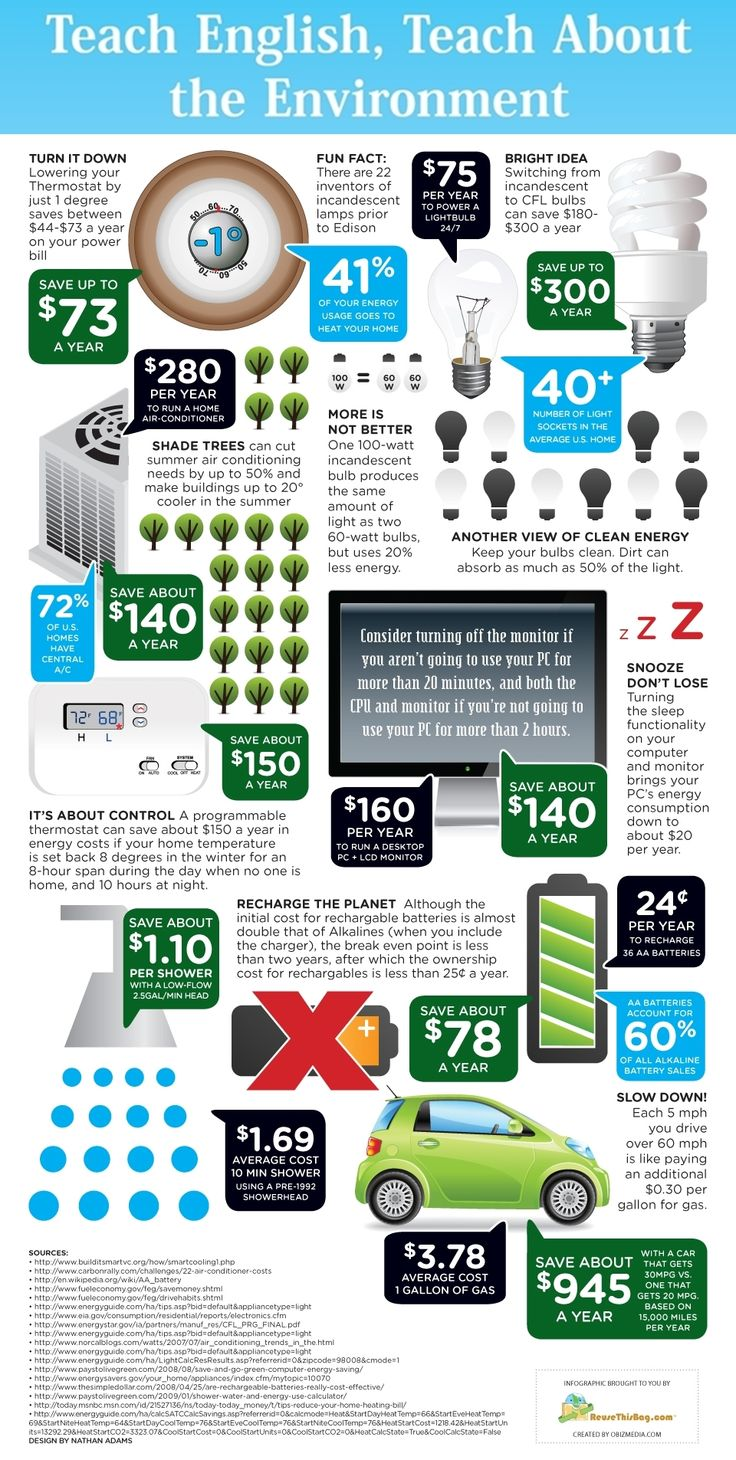 Teach English, Teach About the Environment Infographic