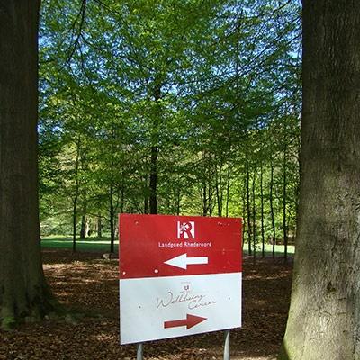 Veel outdoor activiteiten tijdens je heisessie of vergadering - landgoed Rhederoord