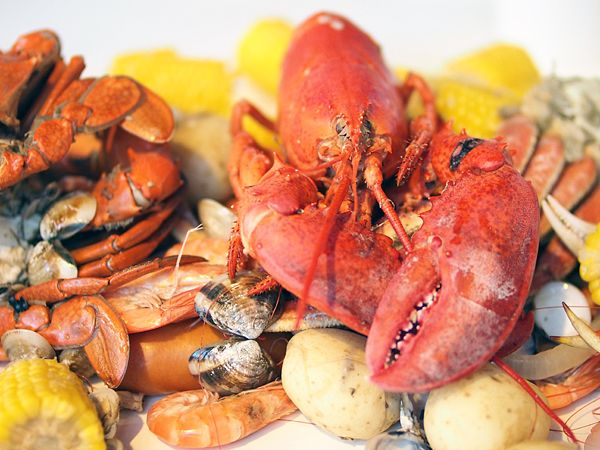 cidg_lobster: American Lobsters, Food Porn, Da Bags,  Maine Lobsters,  Northern Lobsters