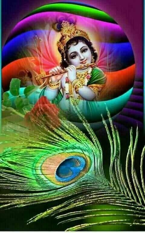 Pin by Sashina Devi on Lord Krishna    Shreenath ji   Radhe Radhe in