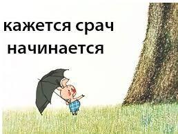 Картинки по запросу русский срач