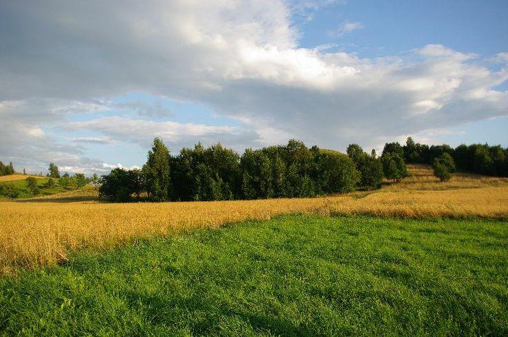 #Działka w Udziejku #Suwalski Park Krajobrazowy