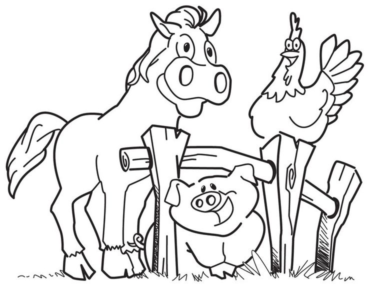 New Farm Animal Coloring Book