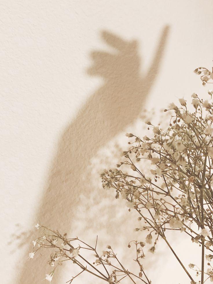 . Schatten und Blumen
