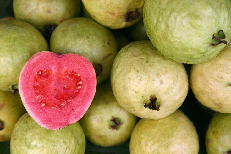 Guava   Guava Fruit, Quito, Ecuador - (550x413 - 81kB)