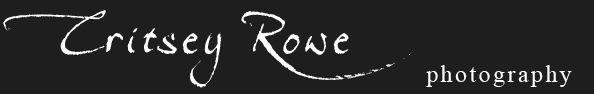 Critsey Rowe Wedding Photography | Charlotte | New York | Chicago | Charleston logo