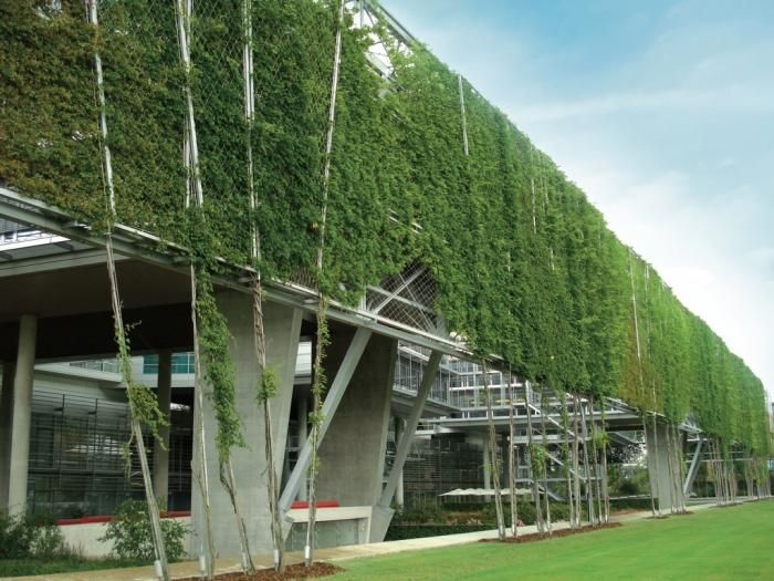 Referenzobjekte fachvereinigung bauwerksbegr nung e v dachbegr nung gr ne fassaden - Grune architektur ...