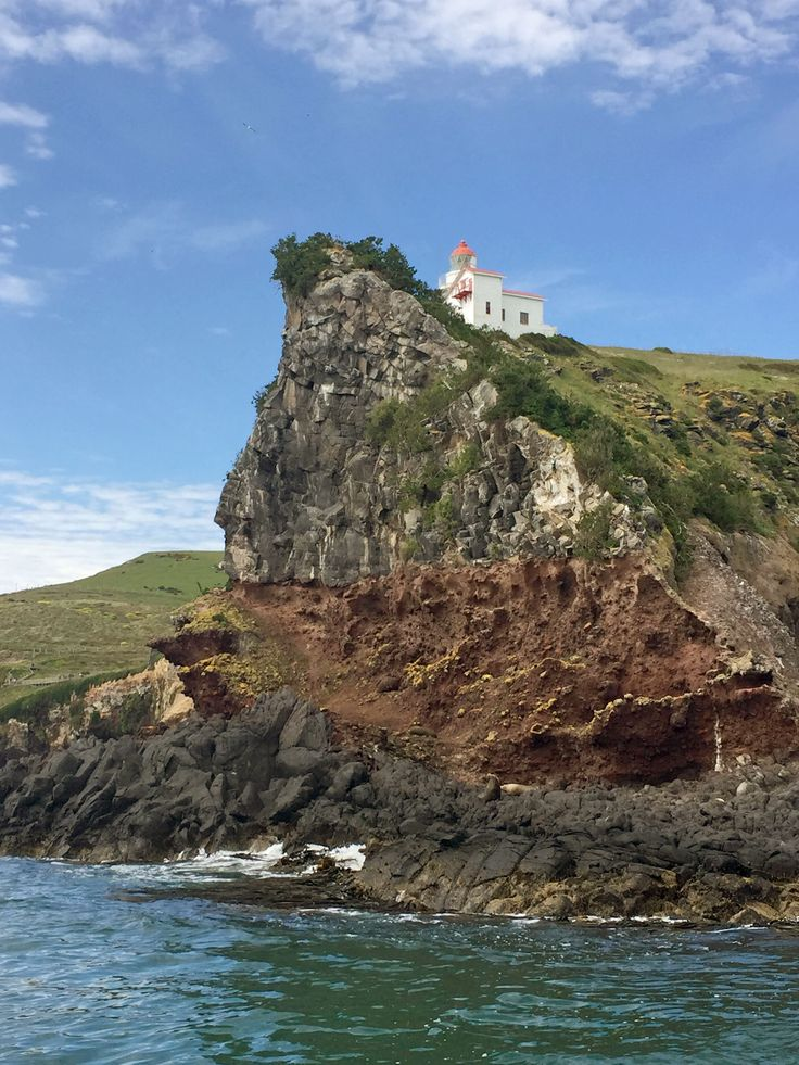 The lighthouse at Taiaroa Head at the entrance to Otago Harbour http://neilrawlins.blogspot.co.nz/