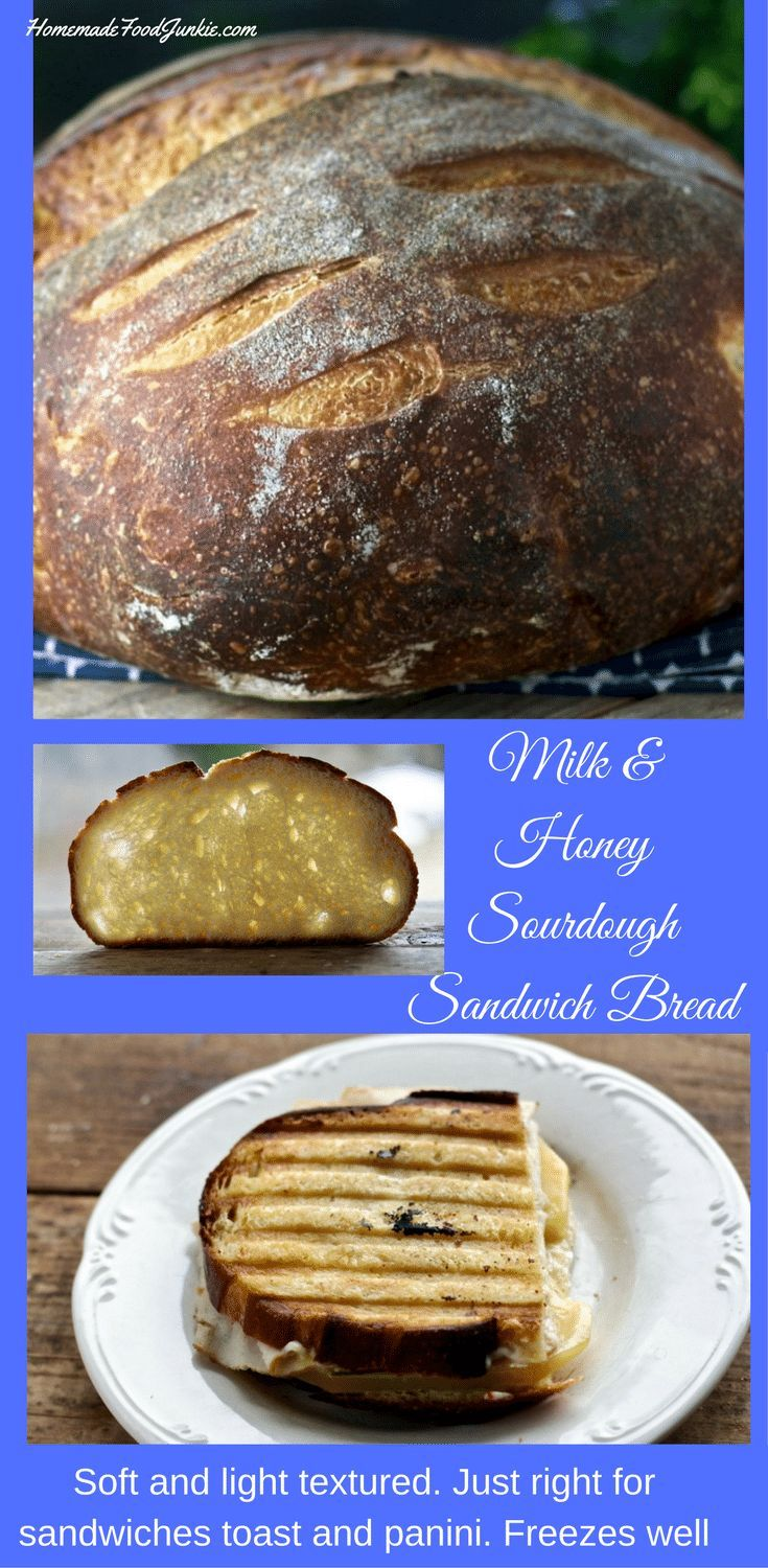 Milk And Honey Sourdough Sandwich Bread is a soft sliceable bread perfect for sandwiches and toast. #sourdough #bread #breadrecipe #breadbakers #sourdoughbread #sandwichbread