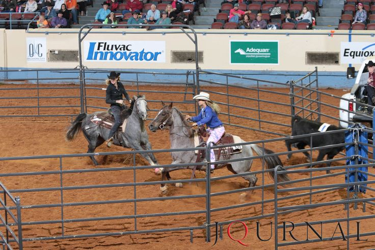 Amateur Ranch Sorting | Riding My Genuine Cat and ARC One Roan Mist, Sarah Anne Lesh and Colette Brooks win the 2015 AQHA world championship