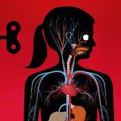 Människokroppen - Hur ser det ut innanför skinnet
