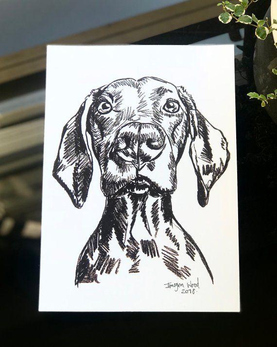 Art Print Black White Vizsla A4 Fashion Art Prints Dog
