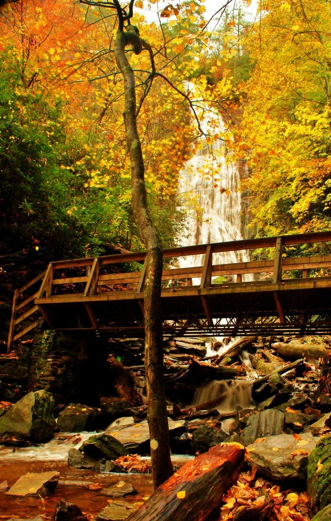 mingo falls cherokee nc | mingo falls cherokee nc .... Can't wait to move!!!