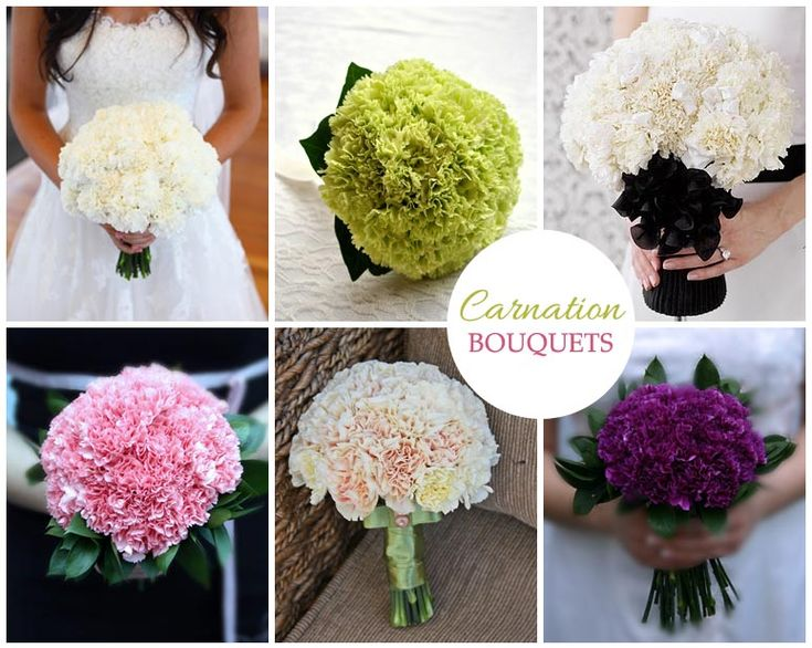 Carnation Flowers Bouquite Mood Board With Diffe Wedding Bouquets