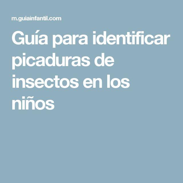 Guía para identificar picaduras de insectos en los niños