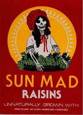 essay american dream raisin sun