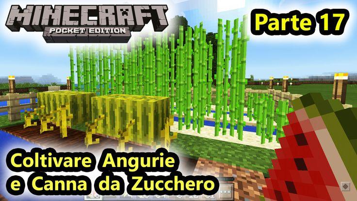 Minecraft PE - Coltivazione di Angurie e Canna da Zucchero - (Salvo Pimp...