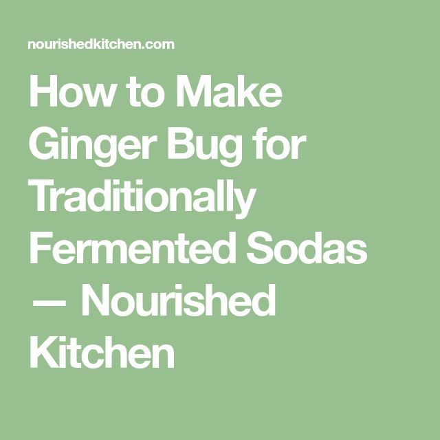 How to Make Ginger Bug for Traditionally Fermented Sodas — Nourished Kitchen