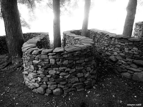 Andy Goldsworthy wall snaking around trees, Storm King   (4383)