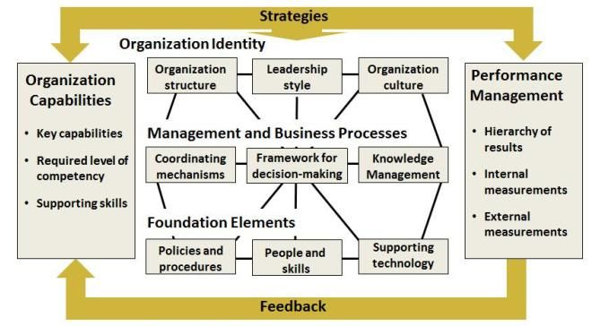 Organisational & Education Development