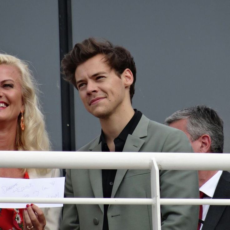 Harry Styles Updates (@BestDailyHarry) | Twitter