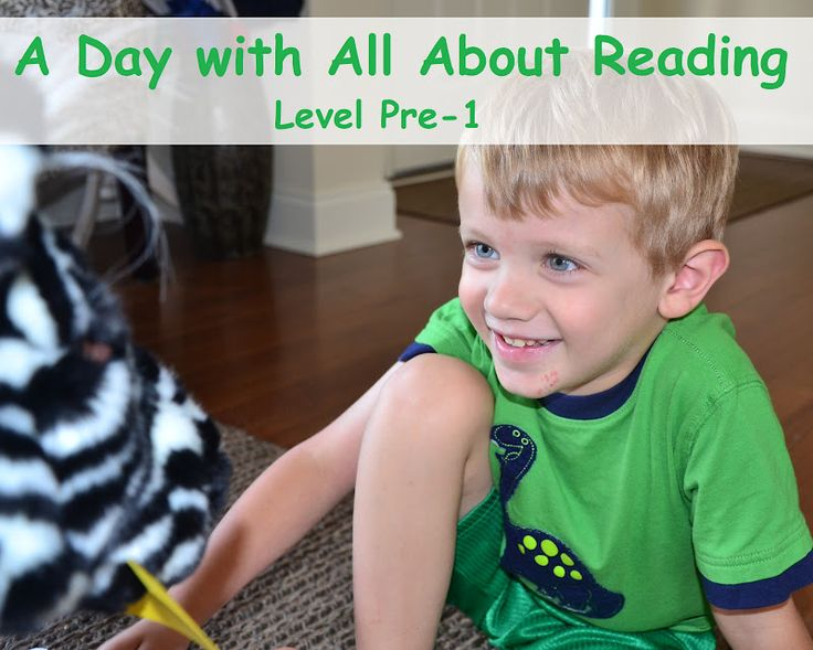 A Day with All About Reading -- my son LOVES this program!