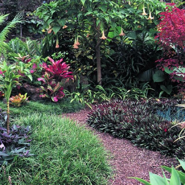 54 best Hawaiian Garden Inspiration images on Pinterest ...