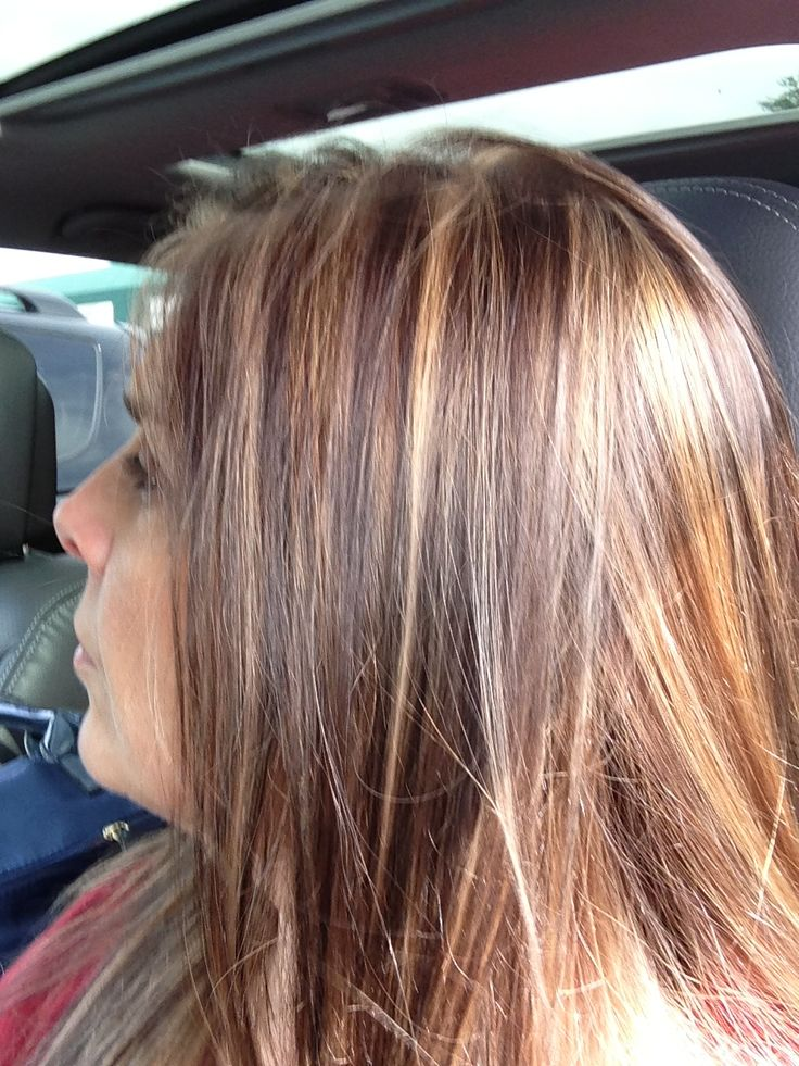 Light Brown Hair With Highlights And Low Lights
