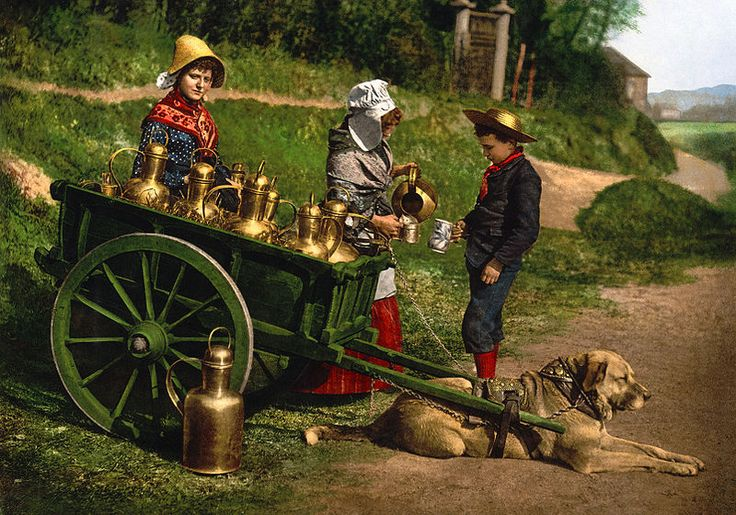 Milksellers with Dogcart, Brussels, Belgium an Autochrome from 1890-1900, Library of Congress via Detroit Publishing Company