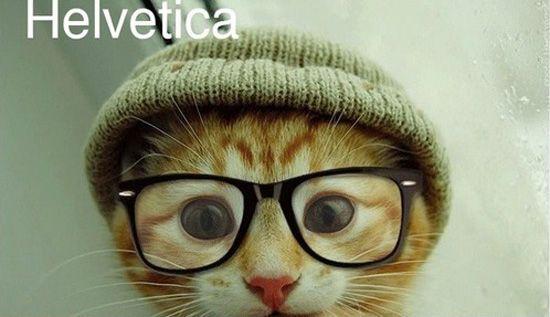 Llegan los gatitos tipográficos
