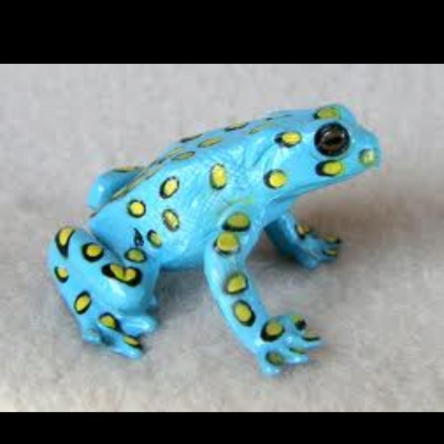 Poison Dart Frog Find the largest selection of organic gluten free dog treats in the world. Www.boneyardbakery.net