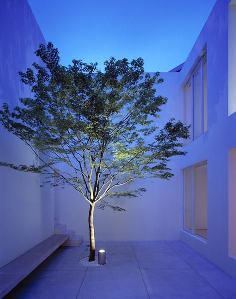 Patio of the Tetsuka House in Tokyo by demi-god John Pawson.