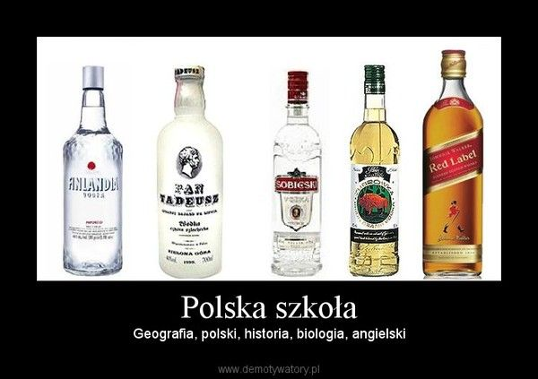Polska szkoła – Geografia, polski, historia, biologia, angielski