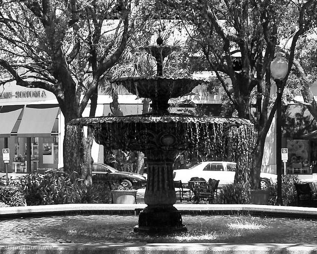 Old Hyde Park Village Tampa 79