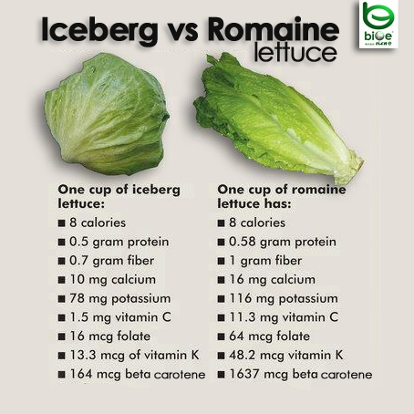 how many carbs in shredded iceberg lettuce