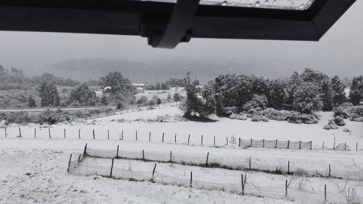 Día nevado