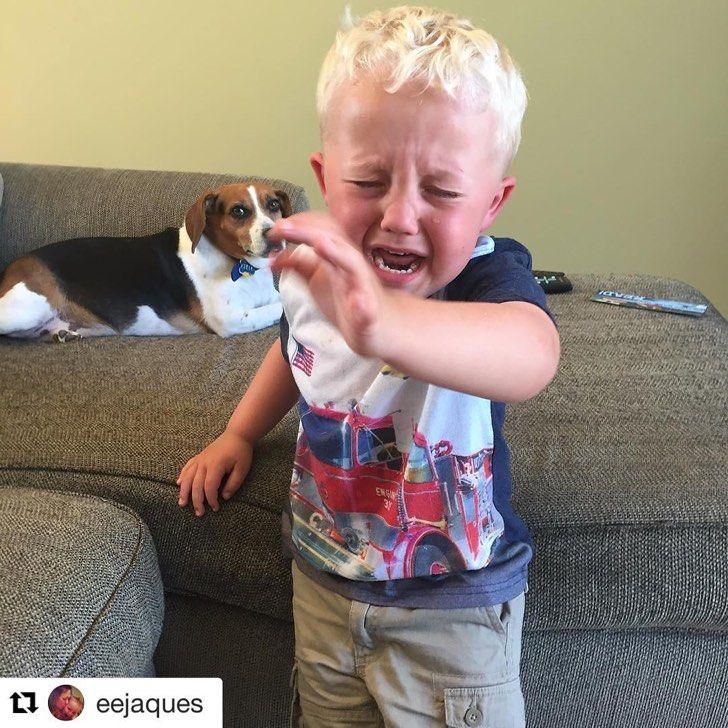 Por qué lloran estos niños? Estas fotos te muestran los casos más insólitos!