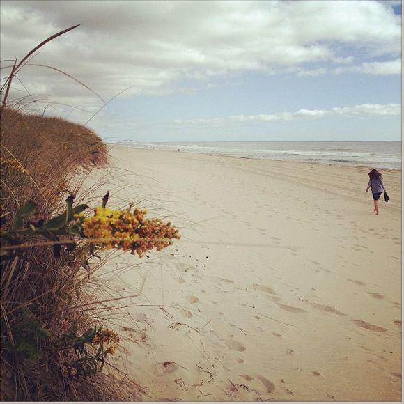 Fall at the beach!