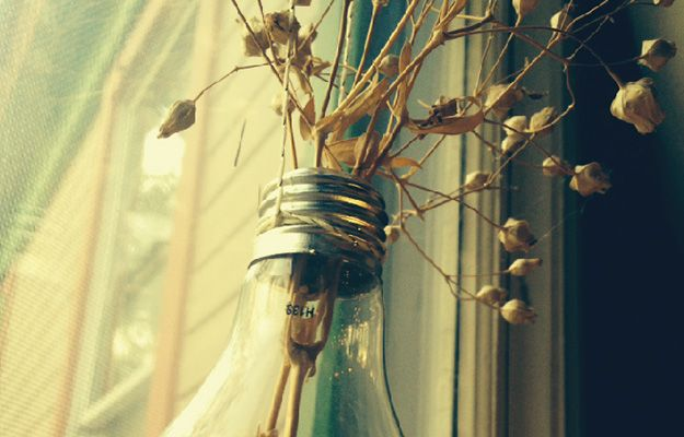 Want to find out How To Make a Hanging Lightbulb Planter? We'll take you through the process so you can build your very own lightbulb planter.