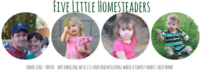 Five Little Homesteaders