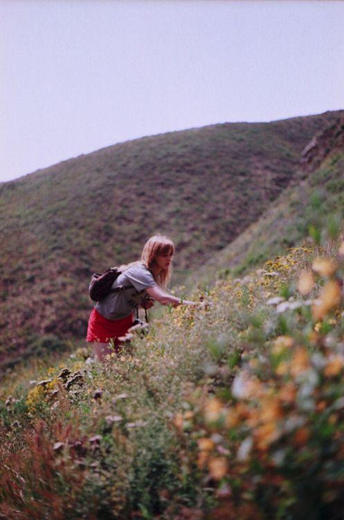 pick flowers.: