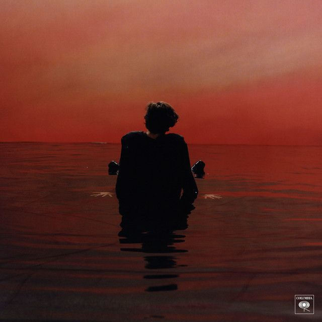Omg when I heard Sign of the times for the first time my heart stopped and I started to cry In class it was so embarrassing but i couldn't hold it in! HIS VOICE OMFL IM DEAD!